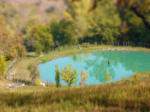 Lake at different settings