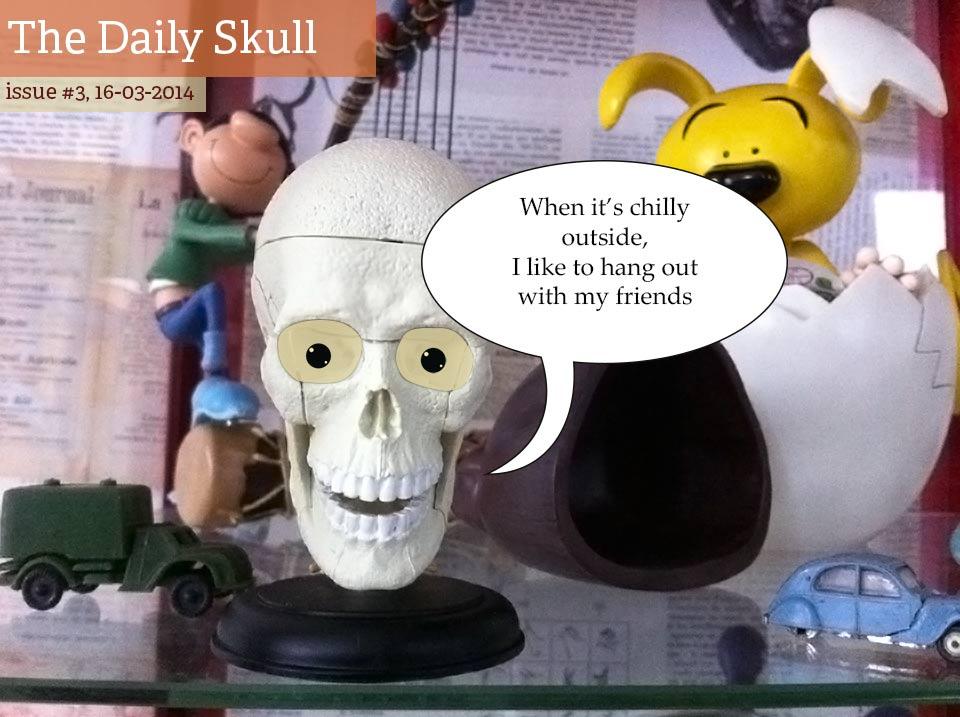 dailyskull003