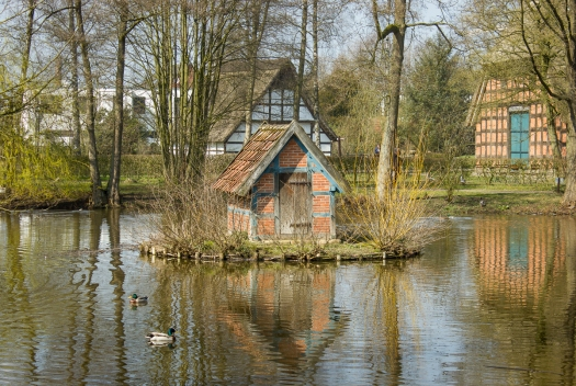 Pond with fowl shelter and reflections